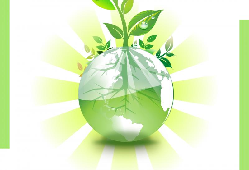 Stampa su carta riciclata
